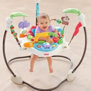 d769e574f Fisher-Price Luv U Zoo Jumperoo
